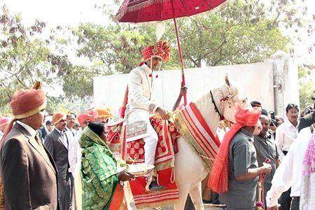 Riteish Deshmukh Wedding Horse